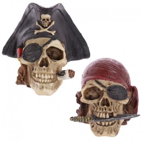 Crâne pirate de décoration