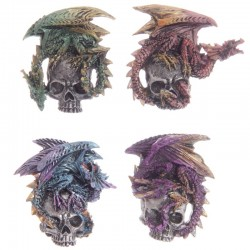 "Magnet dragon sur crâne ""Dark legends"" ~ Lot de 4 ~"